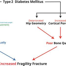 Research papers in diabetes mellitus